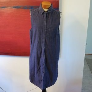 Rag and bone denim button front dress